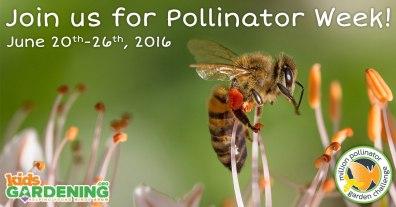 06172016-pollination-socialimage