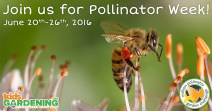 06172016-pollination-socialimage