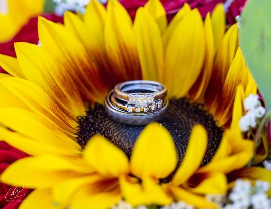 Gevry_wedding-1053